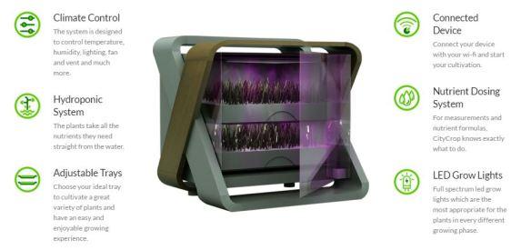 Citycrop-Box